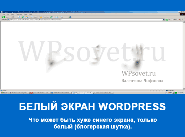 почему появляется белый экран wordpress