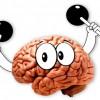 Тренажеры для мозга – рейтинг ТОП-15 лучших