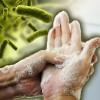 Здоровье в ваших руках