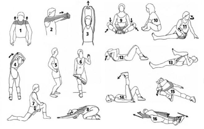 Упражнения на растяжку мышц спины
