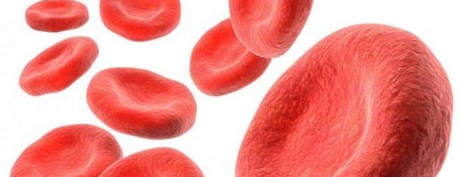 Как быстро поднять гемоглобин в домашних условиях